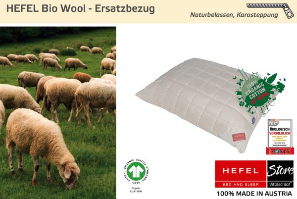 Hefel - Naturhaar - Bio Wool Hülle - BIO SCHAFWOLLE - Größe: 40x40 Reißverschluß: Ja ; Füllgewicht : - ; Füllgewicht 2 : n.v.. Hefel Bio-Bettwaren, Decken, Polster, Unterbetten und Bettwäsche von Vitalschlaf: Ihre individuelle & vitale Schlafwelt aus Öst