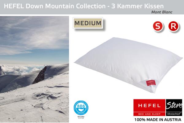 Hefel - Daune - Mont Blanc MEDIUM - Kissen - Größe: 40x60 Reißverschluß: Nein ; Füllgewicht : 460 ; Füllgewicht 2 : n.v.. Hefel Bio-Bettwaren, Decken, Polster, Unterbetten und Bettwäsche von Vitalschlaf: Ihre individuelle & vitale Schlafwelt aus Österrei