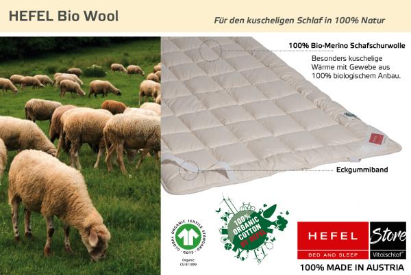 Hefel - Naturhaar - Bio Wool - BIO SCHAFWOLLE (kbT) - Größe: 70x140 Artikel: Unterbett ; Füllmenge 1 : 520 ; Füllmenge 2 : n.v.. Hefel Bio-Bettwaren, Decken, Polster, Unterbetten und Bettwäsche von Vitalschlaf: Ihre individuelle & vitale Schlafwelt aus Ö