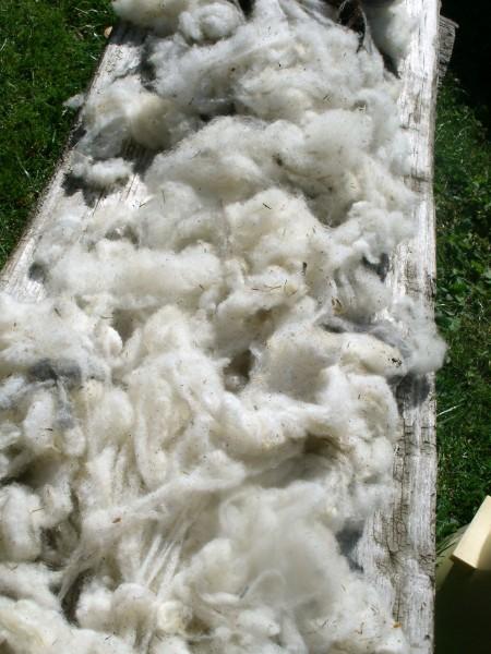 Hefel - Naturhaar - Bio Wool Füllmaterial - BIO SCHAFWOLLE - Größe: n.v. Reißverschluß: NEIN ; Füllgewicht : 200 ; Füllgewicht 2 : n.v.. Hefel Bio-Bettwaren, Decken, Polster, Unterbetten und Bettwäsche von Vitalschlaf: Ihre individuelle & vitale Schlafwe