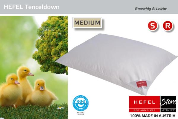 Hefel - Daune - Tencel® & Down MEDIUM - 3 Kammer - Kissen - Größe: 40x60 Reißverschluß: Nein ; Füllgewicht : 460 ; Füllgewicht 2 : 80. Hefel Bio-Bettwaren, Decken, Polster, Unterbetten und Bettwäsche von Vitalschlaf: Ihre individuelle & vitale Schlafwelt